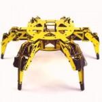 Extreme Hexapod 3-R Robot Kit