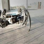 Robot spider with artificial intelligence